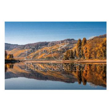 Landschaft am Rhein im Herbst