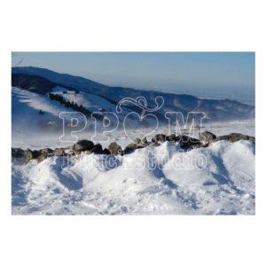 Herliches Bild im Schnee bei Sonne