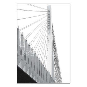 Neuwieder Brücke in graustufen.