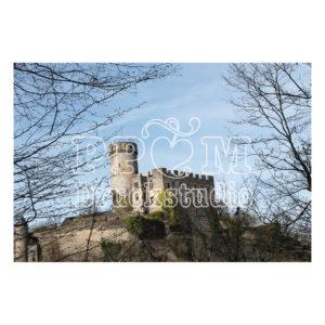 Burg Pyrmont zwischen Bäumen im Frühling