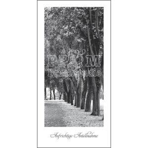 Insel Ziefurt Trauerkarten mit Bäumen